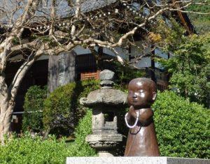 能仁寺本堂とサルスベリと子供のお坊さん像