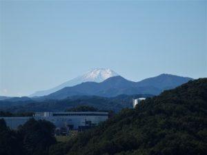 天覧山から富士山